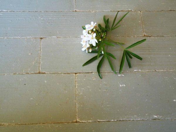 Parquet en chêne naturel blanchi
