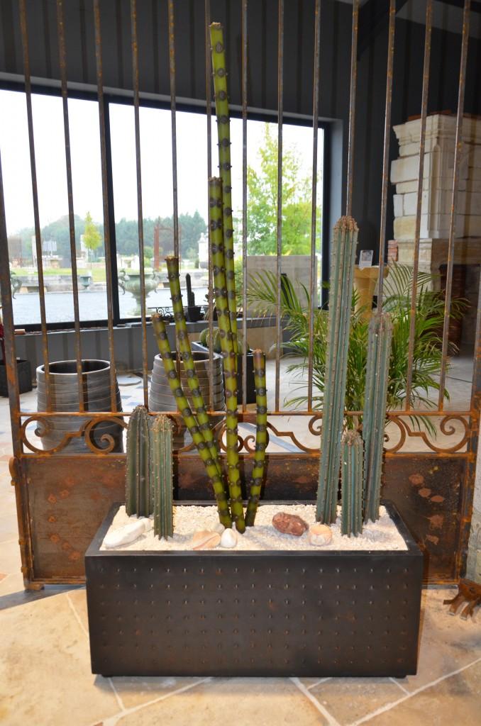 Jardini Re De Cactus M Tal