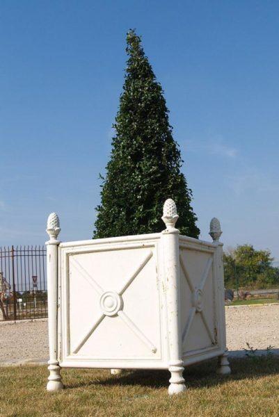 iron white tree planter