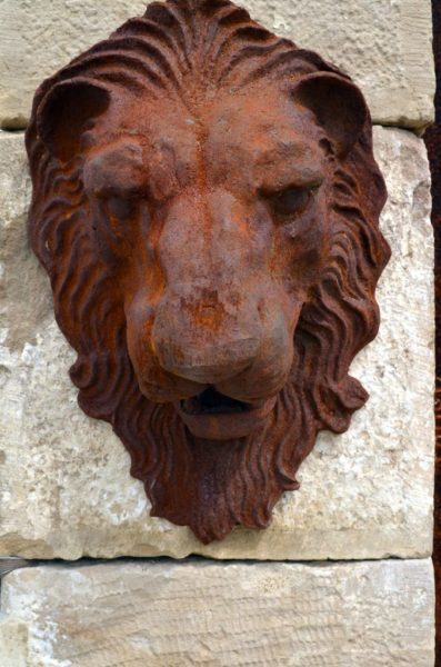 face of the cast iron lion head