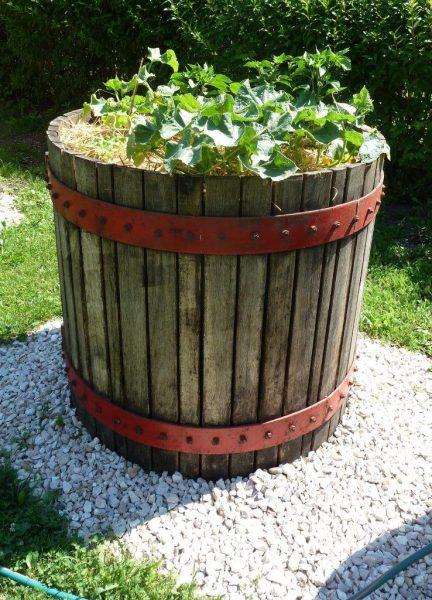 cage de pressoir en vieux bois