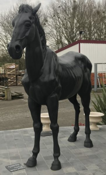 black horse standing in iron