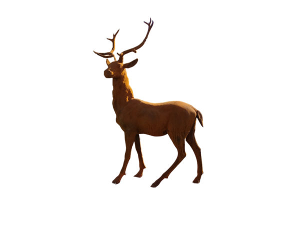 new deer statue